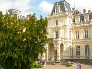 Blommande träd vid Palats Potocki.