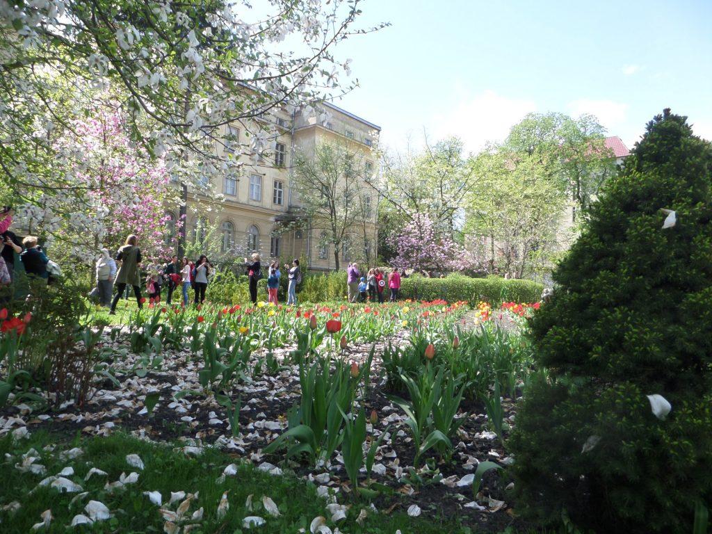 Botaniska trädgården i Lviv